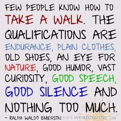 Walking-quotes-Few-people-know-how-to-take-a-walk.-The-qualifications-are-endurance-plain-clothes