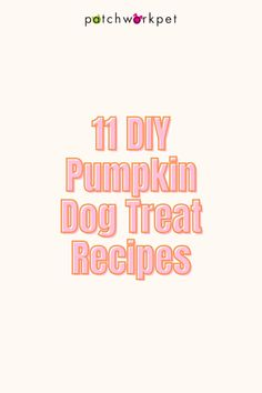Fall is known for its very distinct flavors like cinnamon, maple, & pumpkin (I bet your mouth is watering just thinking about them!) and they make for GREAT ingredients in dogs treats! We've rounded up some of the best do-it-yourself recipes for you to satisfy your dog's sweet tooth! Pumpkin Dog Treats, Diy Dog Treats, Homemade Dog Treats, Diy Pumpkin, Dog Treat Recipes, Healthy Dog Treats, Dog Bakery, Cinnamon, Sweet Tooth