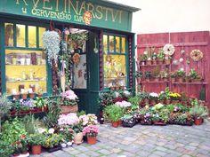 Google Image Result for http://phyllisdobbs.info/wp-content/uploads/2007/09/flower-store.jpg