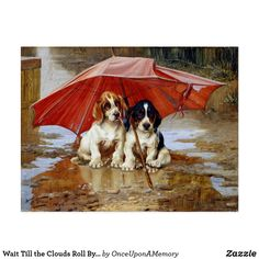 Wait Till the Clouds Roll By W.H. Trood cute dogs Postcard