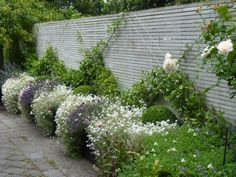 pale grey fence with flowers growing up it, diagonally