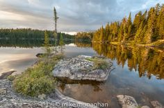 Canada's Boreal - photo by Mike Monaghan