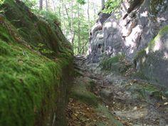 Kokořín valley, central Bohemia, old chiselled way to village Mšeno