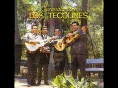 LOS PANCHOS - RECORDAR ES VIVIR- CORTESIA DE JOSE RIVERA - YouTube