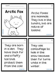 Arctic Fox Activities for at Home Learning Animal Activities, Preschool Activities, Fox Information, Polar Animals, Winter Activities For Kids, Teacher Binder, Arctic Fox, Summer School, Mini Books