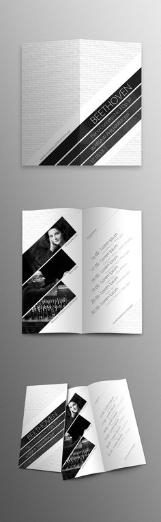 Beethoven Piano Concerto by Damian Grabowski, via Behance
