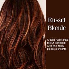 more auburn hair blonde highlights Honey Blonde Highlights, Red To Blonde, Caramel Highlights, Color Highlights, Fall Hair Highlights, Blonde Color, Reddish Brown, Red Blonde Brown Hair, Brown Hair With Red Highlights