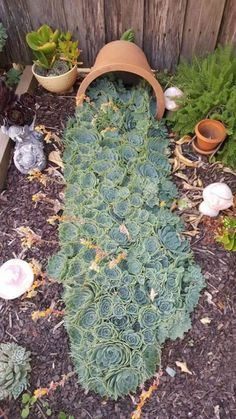 diy garden ideas 30 Amazing DIY ideas for decorating your garden uniquely Look how nice it is. We brought amazing DIY ideas to decorate the garden. They are wonderful ideas that can tr Succulent Landscaping, Succulent Gardening, Front Yard Landscaping, Planting Succulents, Container Gardening, Landscaping Ideas, Vegetable Gardening, Landscaping Borders, Succulent Garden Ideas