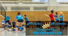 Damen|Volleyball Regionalliga Nordost 2014/15