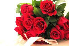 Roses 7-7-14