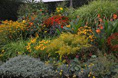 *Garten-Liebe* Staudenbeet im RHS Hyde Hall