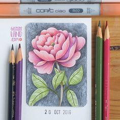 """1,249 Likes, 9 Comments - raquel sánchez pros (@gusosos_land) on Instagram: """"Aceo#26 • done with copics and colored pencils #gusosos_aceo_project #1aceo_a_day…"""""""