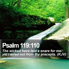 Psalm 119:110 The wicked have laid a snare for me: yet I erred not from thy precepts. (KJV)  #Christian #Christ #Blessed #Worship #Blessed #TheTruth #WordOfWisdom http://www.bible-sms.com/