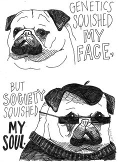 Hipster pug.  I think this really shows the plight of the human condition...