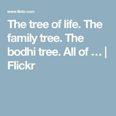 The tree of life. The family tree. The bodhi tree. All of … | Flickr