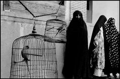 Inge Morath © The Inge Morath FoundationIRAN. Shiraz. 1956. Veiled Muslim women and caged cockatoos (wives of one man).