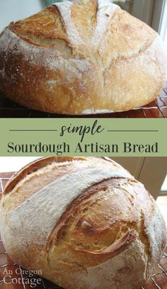 4 Points About Vintage And Standard Elizabethan Cooking Recipes! This Easy Sourdough Artisan Bread Is A Kneaded In A Mixer And Then Cooked In An Enamel Cast-Iron Pan For A Perfect Crust. It Will Become Your Go-To Sourdough Bread Artisan Sourdough Bread Recipe, Sourdough Bread Starter, Artisan Bread Recipes, Sourdough Recipes, Bread Machine Recipes, Sour Bread Recipe, Overnight Sourdough Bread Recipe, Gluten Free Sourdough Bread, Cornbread Recipes