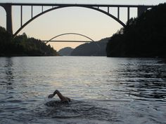 images of open water swimming - Google Search