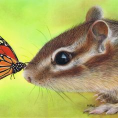 """""""Butterfly Kiss"""", 2.5 x 3.5 inches, Coloured pencils and ink on drafting film - by artist, Karen Hull of 'Karen Hull Art' via redbubble.com."""