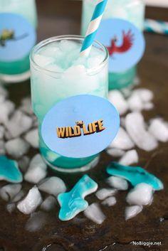The Wild Life blue o