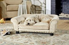 Enchanted Home Pet Furniture eases your dog into a luxurious cushion that engulfs them in complete comfort and warmth. Ultra plush dreamcatcher sofa pet bed fits pets up to 30 lbs with studded ridge for a edgy touch. Elevated Bed, Dog Sofa Bed, Sofa Beds, Couches, Cool Dog Beds, Enchanted Home, Pet Furniture, Smart Furniture, Furniture Dolly