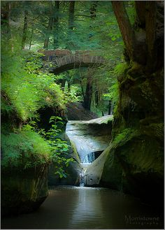 Old Man's Cave Gorge near Logan, Ohio travel USA beautiful places to visit Places Around The World, The Places Youll Go, Places To See, Around The Worlds, Les Cascades, Belle Photo, Vacation Spots, Wonders Of The World, State Parks