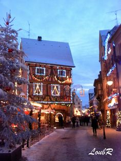 One of my most favorite escapes in Europe - love this town. Christmas in Colmar, Alsace, France Christmas In Europe, Christmas Town, Christmas Scenes, Christmas Markets, Christmas Lights, Oh The Places You'll Go, Places To Travel, Places To Visit, Alsace France