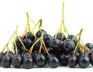 Černá jeřabina, arónie – vyzkoušené recepty