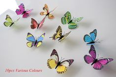 Butterfly by Raffaella Secchieri on Etsy