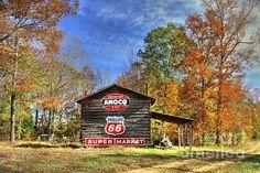 Fine Art Photography, Tobacco Barns, North Carolina, Tobacciana, Autumn, Fall, Caswell County North Carolina, Barns, Phillips 66, Amoco, Advertising Signs, Americana, North Carolina Fall Landscape, Barns, Beauty, Nature,