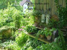 Gartenverbandelt: Gartenreise-D
