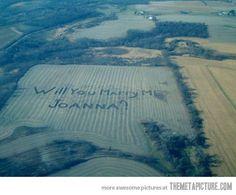 farm field marriage proposal