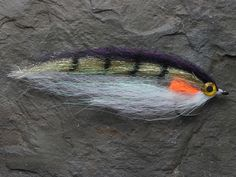 Google Image Result for http://www.uksaltwaterflies.com/acatalog/dougies_BF_Perch.JPG