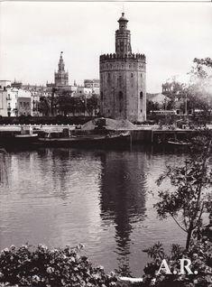 Años 50. Vista de la Catedral y Vista de la Torre del Oro. Fotógrafo Catalá Roca.