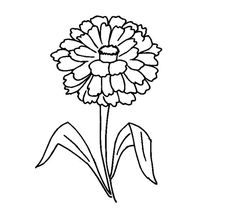 Zinnia Coloring Pages - Best Coloring Pages For Kids Printable Flower Coloring Pages, Lego Coloring Pages, Fairy Coloring Pages, Coloring Pages For Kids, Coloring Sheets, Zinnia Flower Pictures, Daisy Scouts, Girl Scouts, Flower Outline