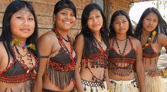 Indias Munduruku-Os Munduruku estão situados em regiões e territórios diferentes nos estados do Pará (sudoeste, calha e afluentes do rio Tapajós, nos municípios de Santarém, Itaituba, Jacareacanga),Amazonas (leste, rio Canumã, município de Nova Olinda; e próximo a Transamazônica, município de Borba),Mato Grosso (Norte, região do rio dos Peixes, município e Juara).Habitam geralmente regiões de florestas, às margens de rios navegáveis,sendo que as aldeias tradicionais ficam nos Campos dos…