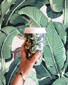 Tropical splash: Coffee at Rawberri, LA