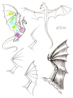 How to Draw Manga/Anime Creature Drawings, Animal Drawings, Art Drawings, Dragon Anatomy, Wings Drawing, Dragon Sketch, Dragon Art, Dragon Statue, Drawing Sketches