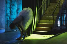 Swans by Lar Rattray: ballet behind the scenes