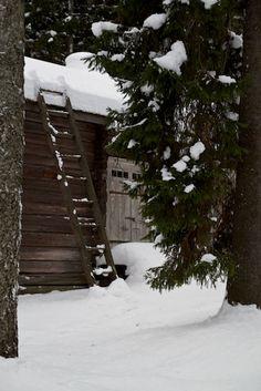 <3 barn doors