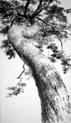 New tree design sketch to draw Ideas Best Landscape Photography, Landscape Photos, Landscape Paintings, Nature Photography, Monochrome Photography, Black And White Photography, Nature Sketch, Black And White Landscape, Learn Art