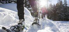 Snowshoeing in Lapland - Raquetas de nieve en Laponia