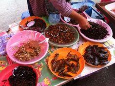 Chiang Mai - travel blog