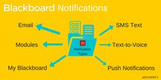 Never Miss a Blackboard Alert with Notifications