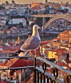 #theYeatmanHotel - The suites are fully equipped and offer a private balcony and panoramic view of Porto and the Douro river.  #Porto #portugal