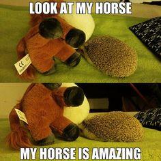 #meme #hedgehog #animal