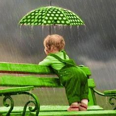 This rain will make the grass green too! Mean Green, Go Green, Green Colors, Colours, World Of Color, Color Of Life, Pink Lila, Under My Umbrella, Green Life