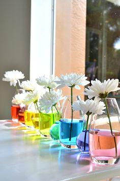 Centre de table avec des flacons et de l'eau colorée.