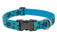 Lupine Originals Collection Adjustable Nylon Collar - Turtle Reef (Large)
