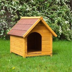 Dog Kennel Spike Standard Solid Sturdy Attractive Well Made House Easy Size M  http://www.ebay.co.uk/itm/Dog-Kennel-Spike-Standard-Solid-Sturdy-Attractive-Well-Made-House-Easy-Size-M-/252337953845?hash=item3ac0839c35:g:0fYAAOSwZtJW-~xS  Grab this Budget Offer. Check By_touch2 and get this bargainNow!